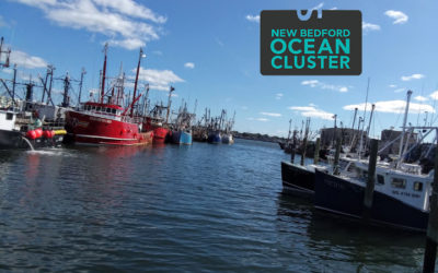 The New Bedford Ocean Cluster Surfaces